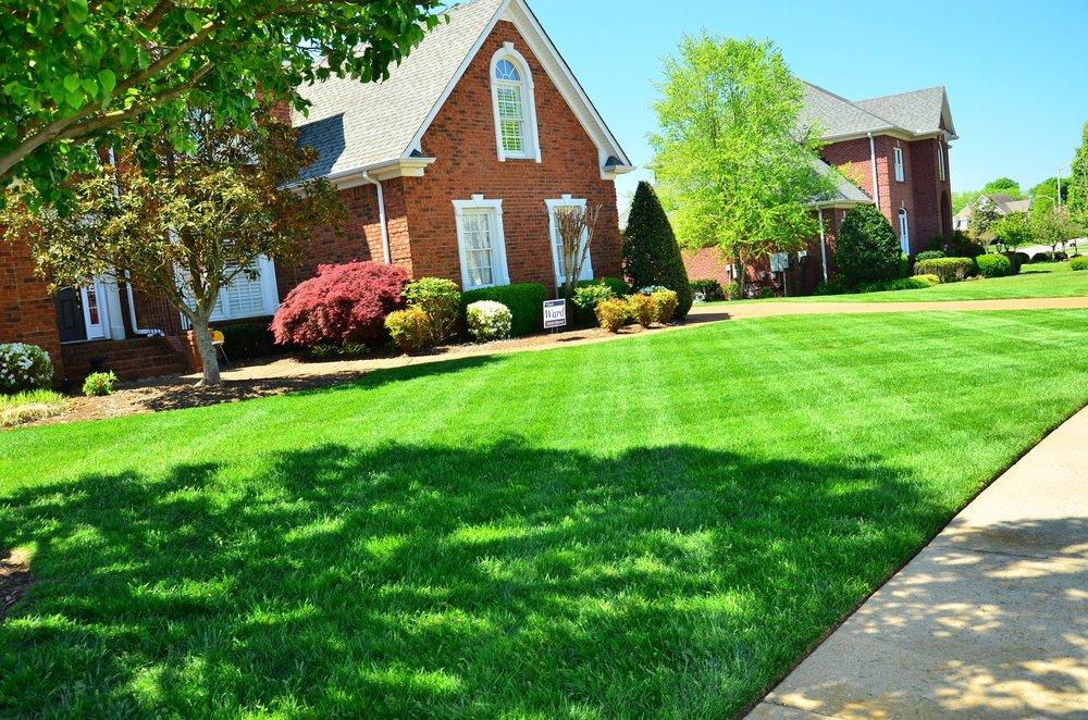 lawn-care-643561.jpg