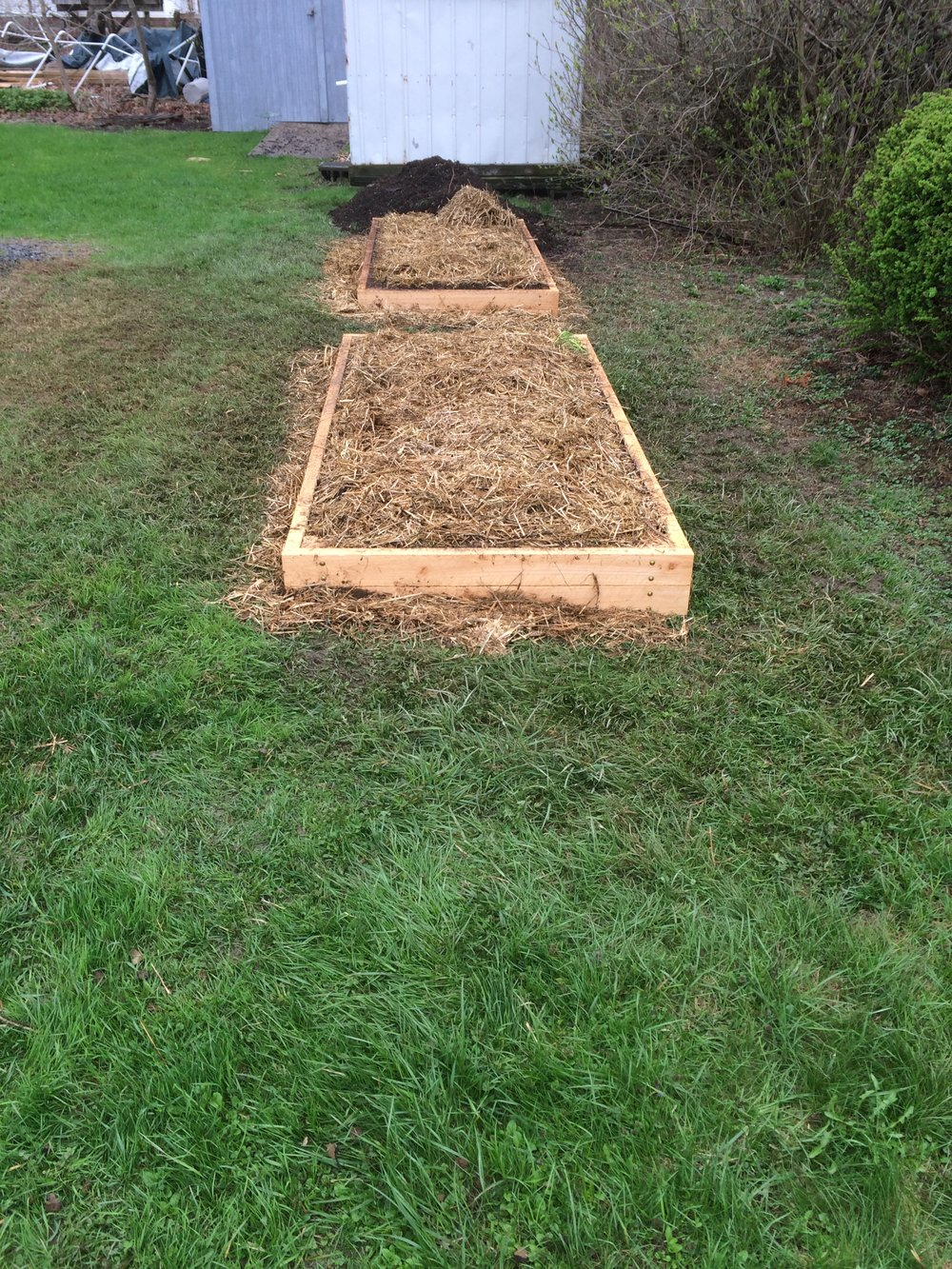 After (raised beds for Air B&B tenants)