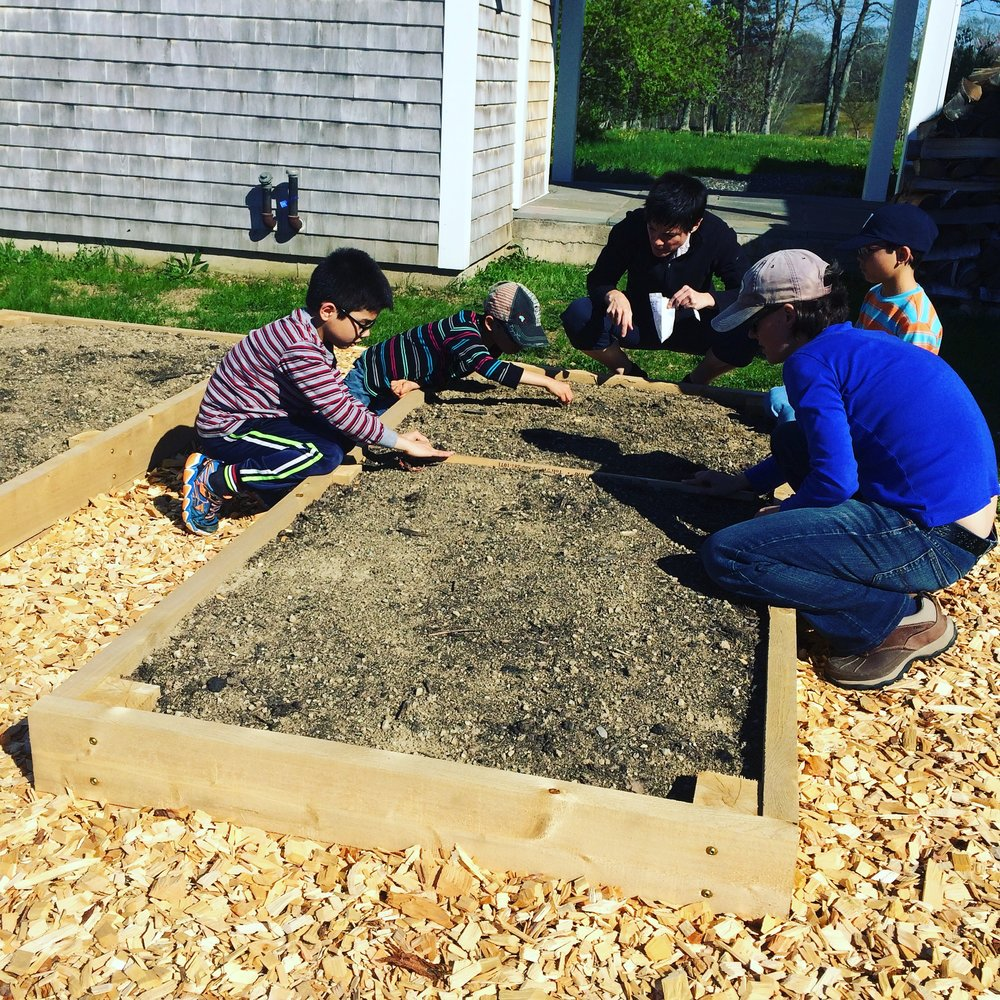 Educating the family on how and what to direct seed vs. transplant in their newly installed cedar raised bed garden.
