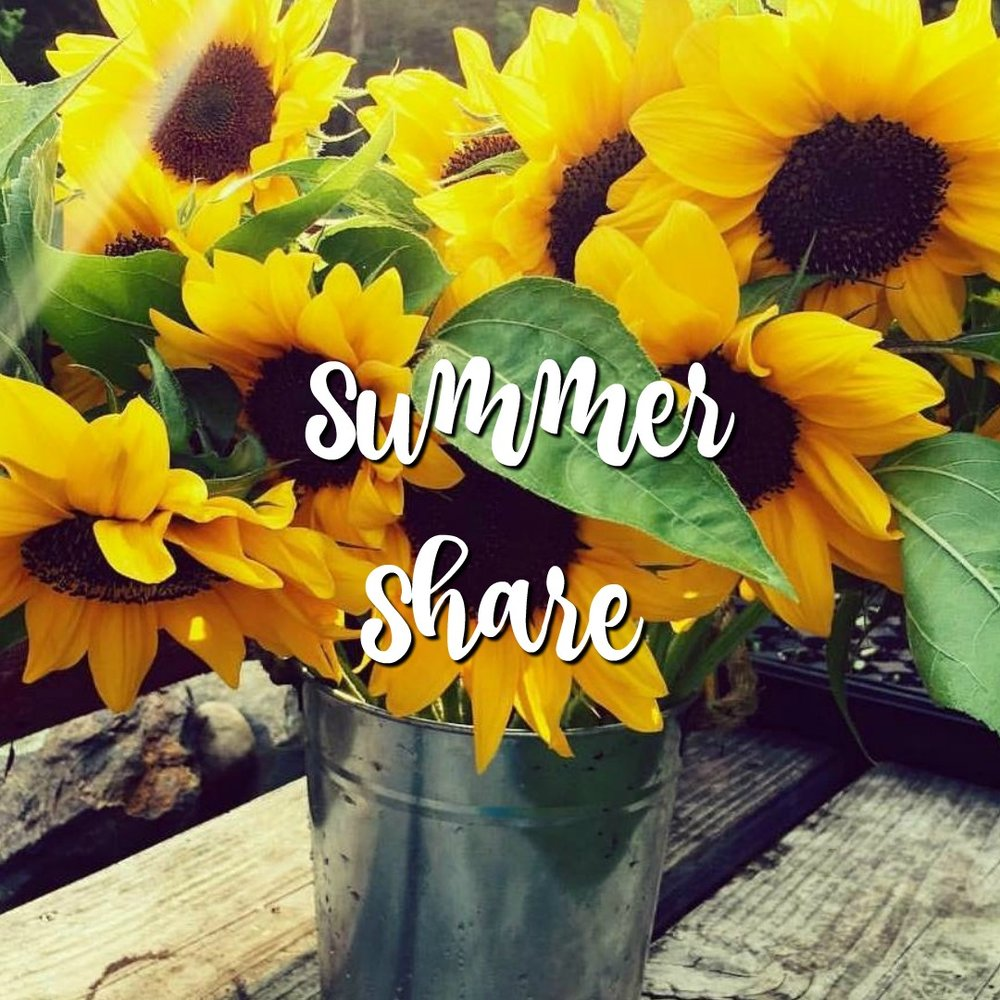 Summer Share - no copy.jpg