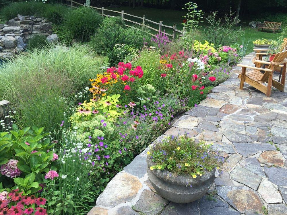 Kaplan - butterfly garden.JPG