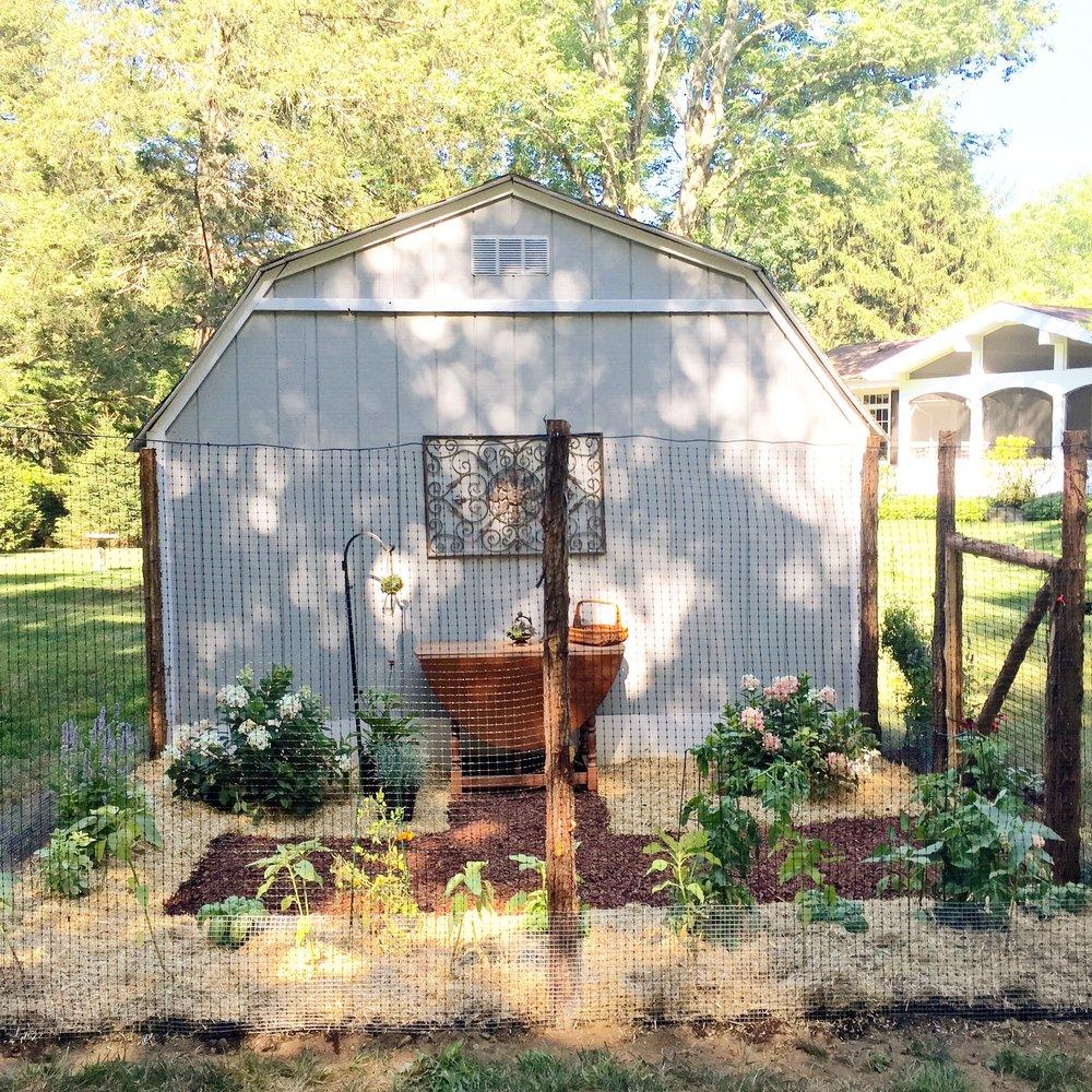 Walsh - garden.JPG