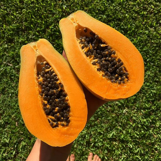 Finding a perfect papaya is almost as satisfying as finding a perfect avocado, especially if you then can make a breakfast like this 🤤 * * * * * * #healthybreakfast #papaya #tropicalbreakfast #veganbreakfast #goplantmade #plantbasedbreakfast #coconutjoghurt #papayaboat #wholefoods