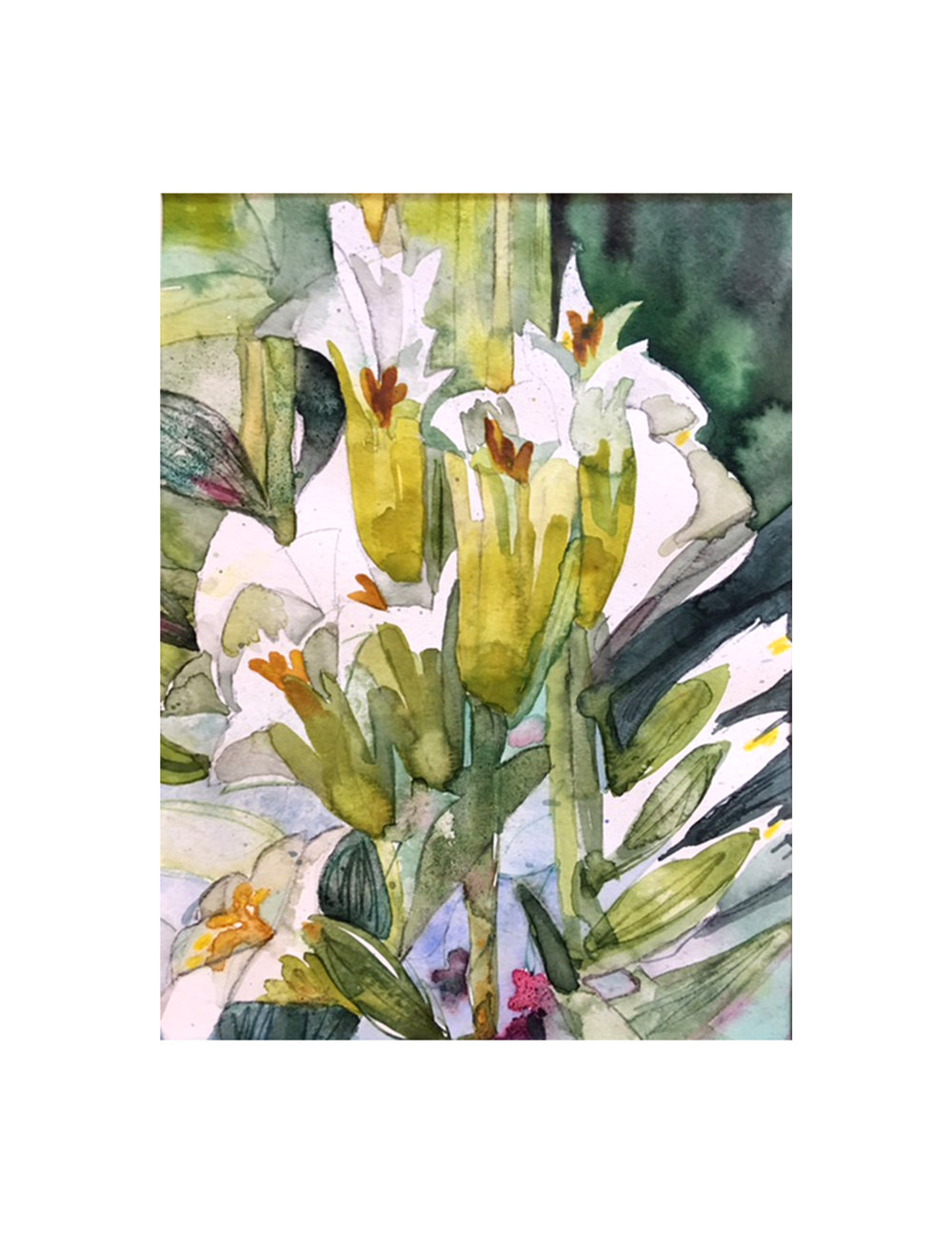Lillies in Perylene