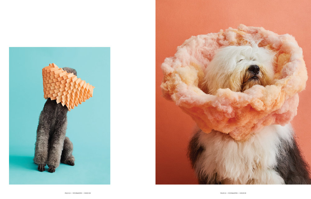 Four&Sons_Issue08_Cones of Shame-4.jpg