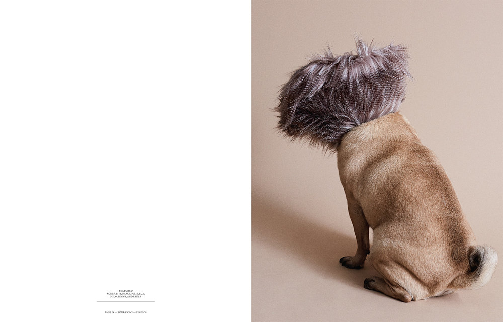 Four&Sons_Issue08_Cones of Shame-5.jpg