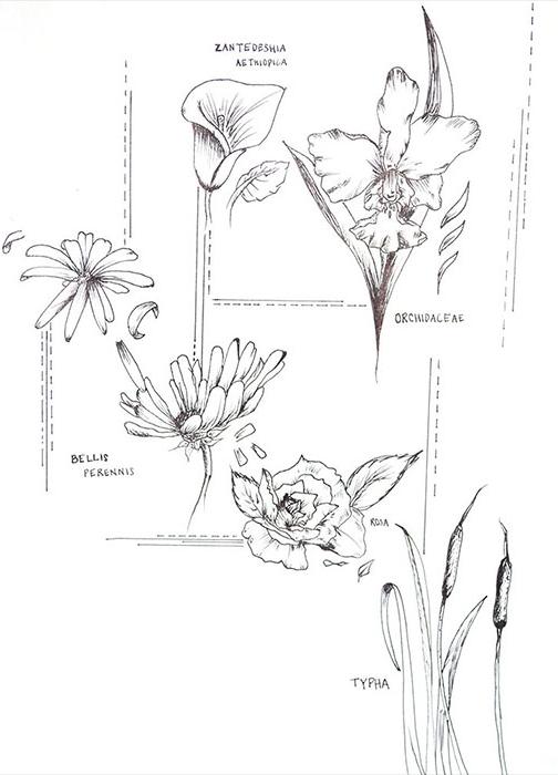 flowersbio.jpg