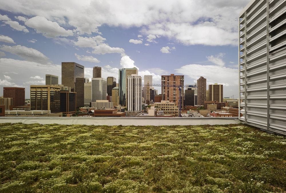 Photo Credit Denver Green Roof Initiative