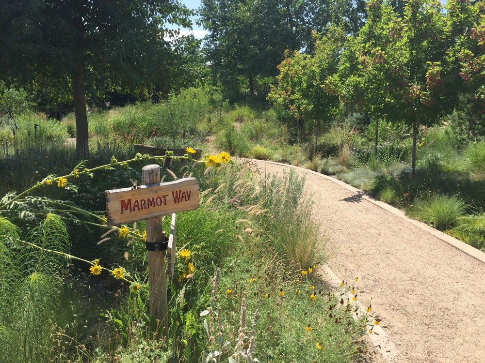 Denver Botanical Gardens: Mordecai Children's Garden