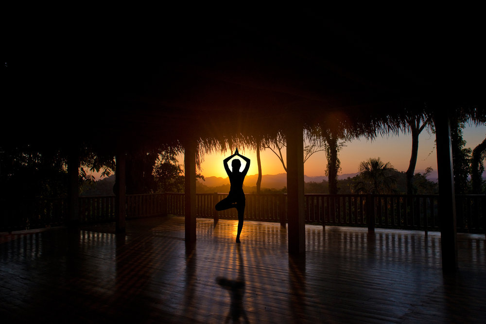 Yoga Palapa - Our stunning yoga platform offers uninterrupted jungle views. Ask us about hosting a Yoga Retreat at Copal Tree Lodge.