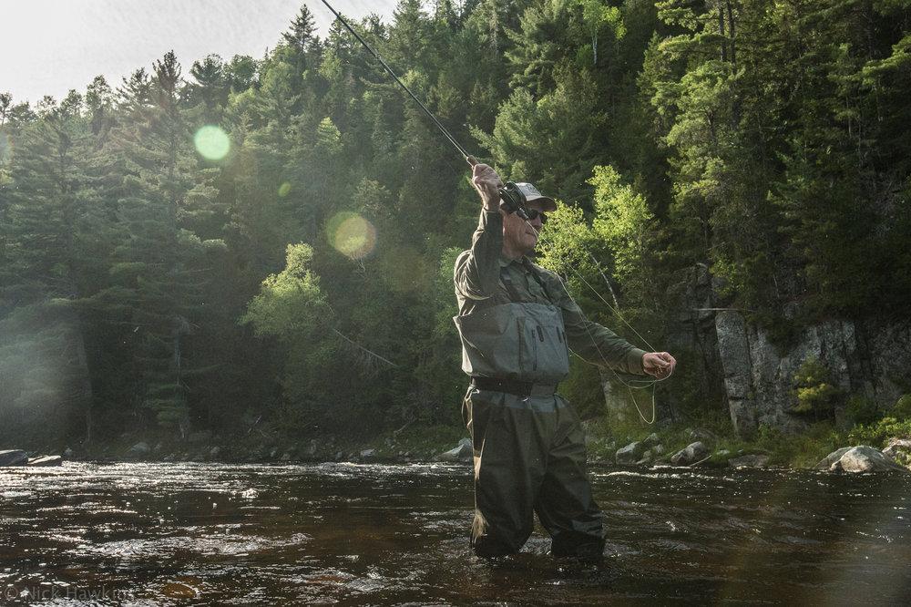 saving-salmon-Nick-Hawkins-6321.jpg