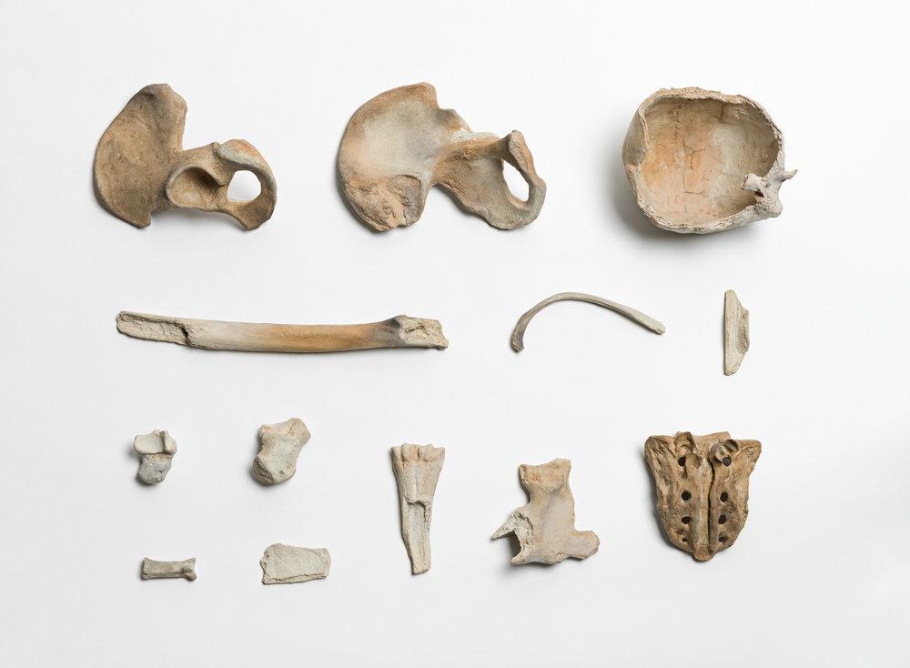 Remains , 2014, Porcelain,Courtesy of Ai Weiwei Studio & Sakip Sabanci Museum / Ai Weiwei Studio ve Sakıp Sabancı Müzesi izniyle.
