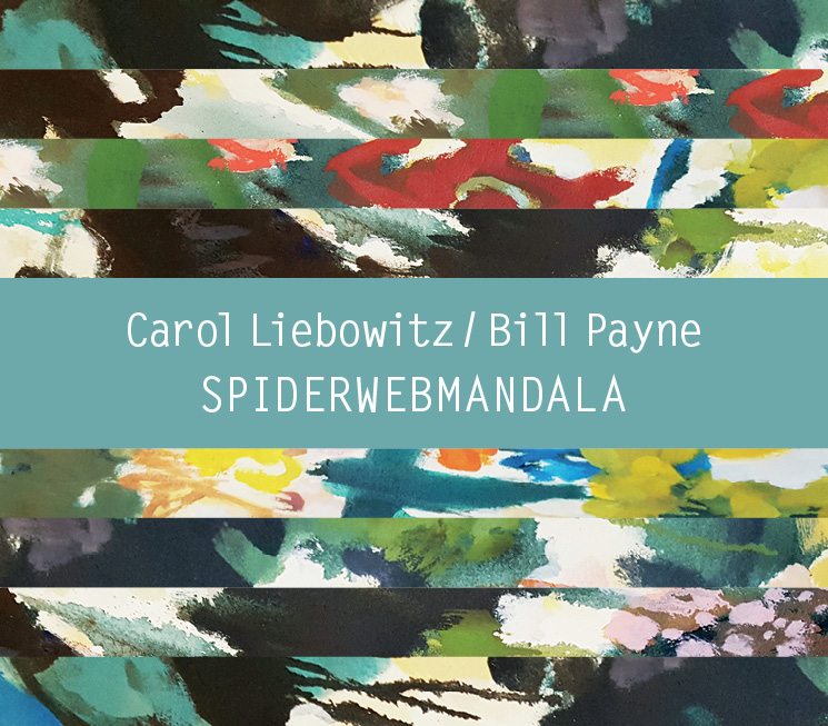 SPIDERWEBMANDALA   Bill Payne/Carol Liebowitz