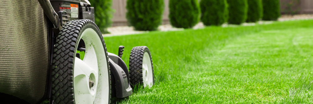 full-service Residential Lawn and landscaping available
