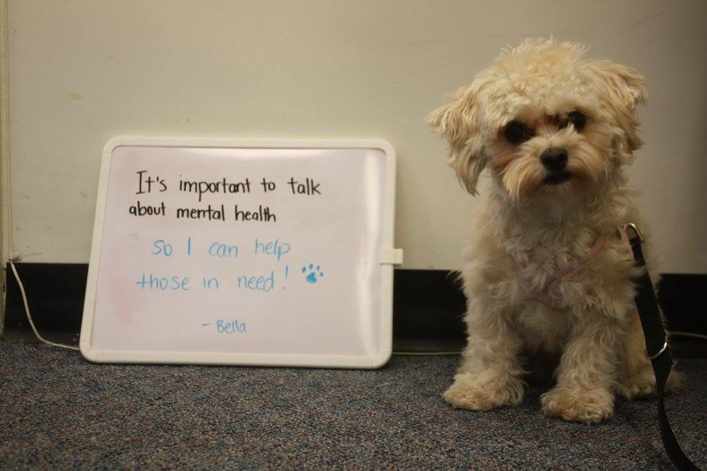mental health bella.jpg