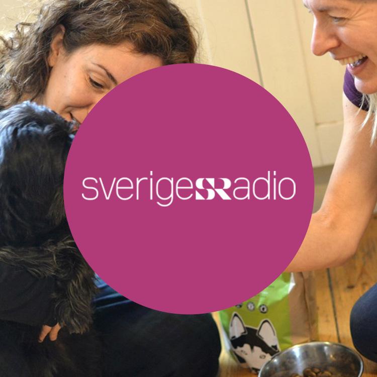 Press_SwedishRadio.jpg