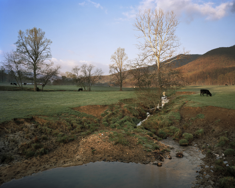 Brown family farm, North Fork of the Swannanoa River, Black Mountain, North Carolina, 2007