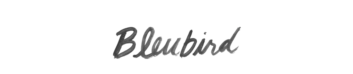 bleubirdblog_newheader