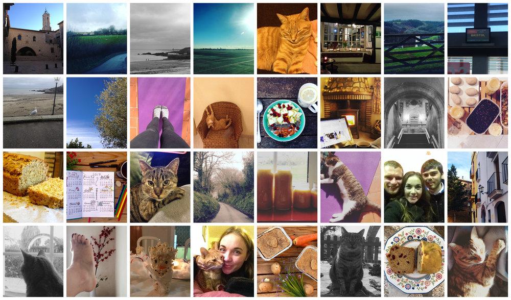 Collage-PicMonkey.jpg