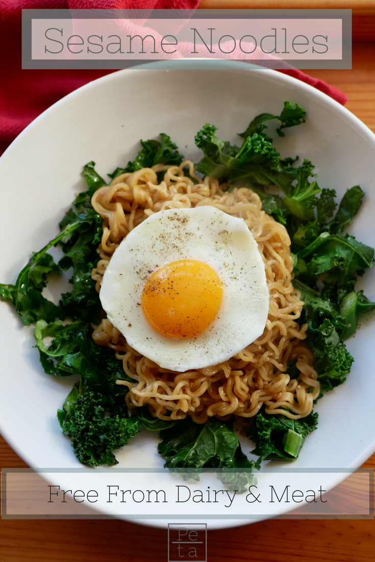 Sesame Noodles Recipe - Free From Dairy & Meat