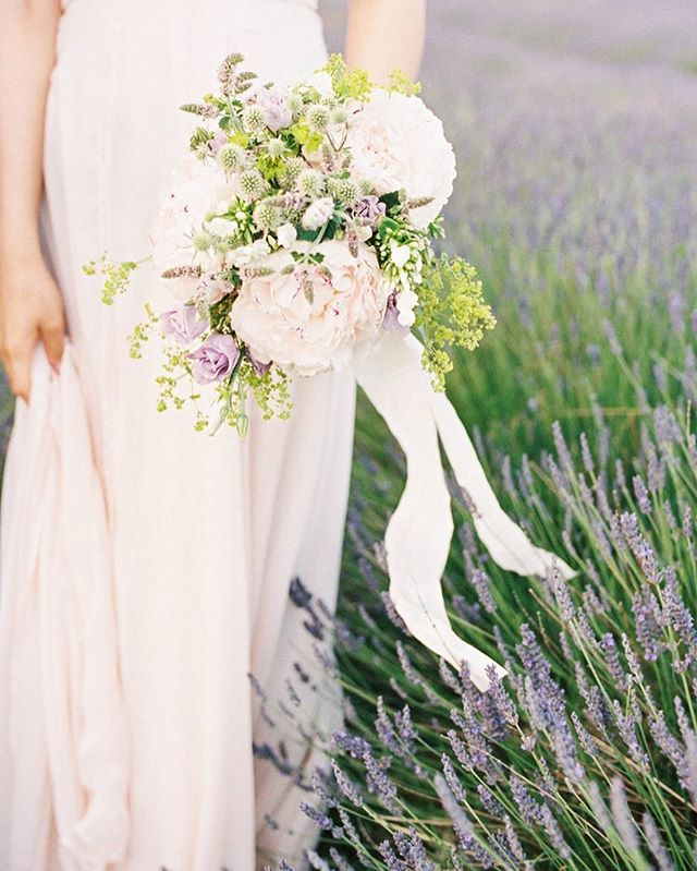 Margaret's bouquet 🌸🌿💕 #alchemillamollis #hydrangeas #floweringmint #hitchinlavender #lavenderfields #engagementphotos