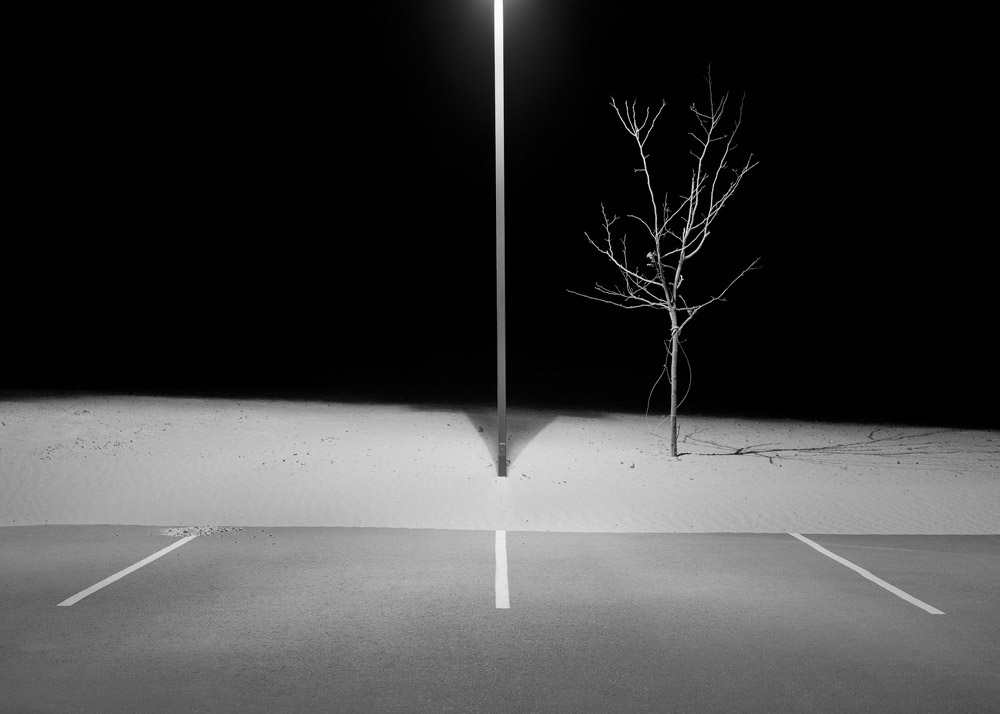 Lamp Post and Tree, Page, AZ, 1998