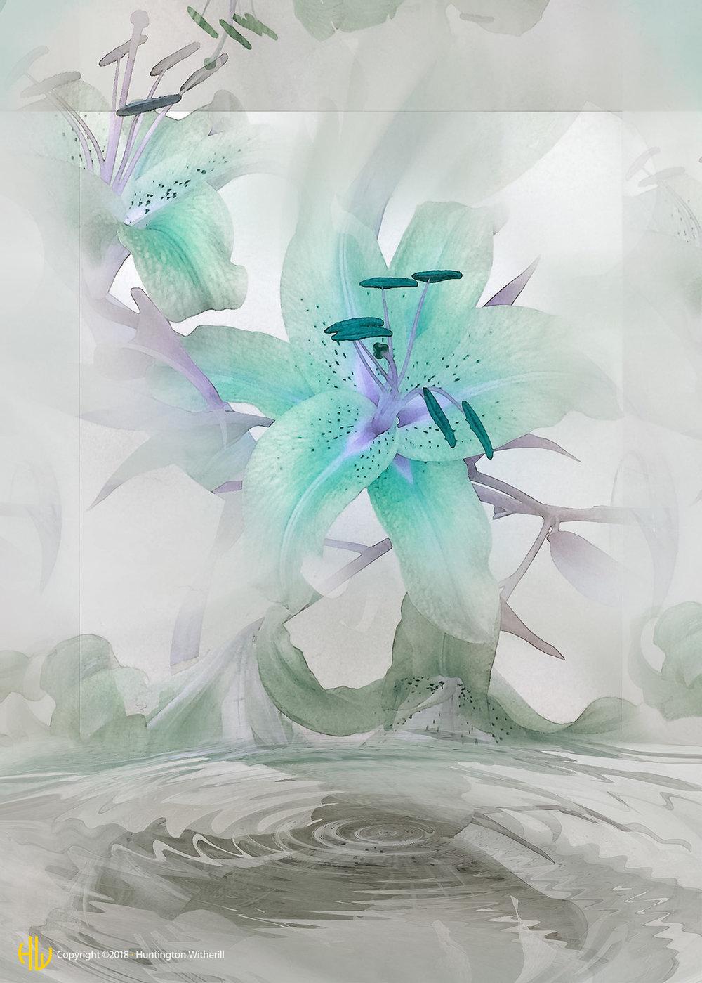 Lilies #60, 2003