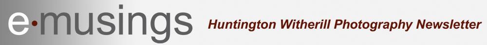 emusings-logo.jpg