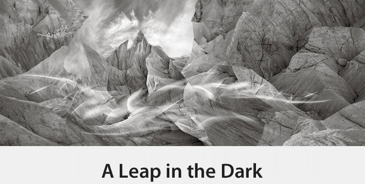 Copy of A Leap in the Dark