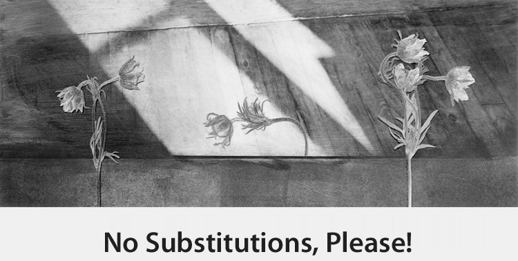 Copy of No Substitutions, Please!