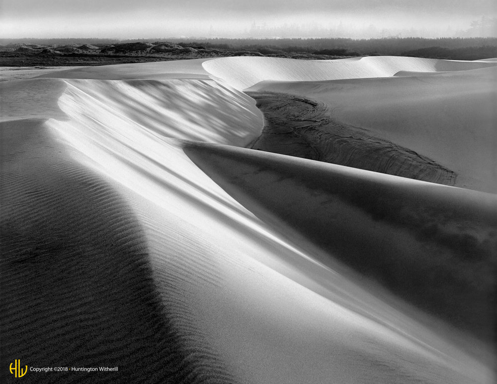 Dunes, Sutton Creek, OR, 1986