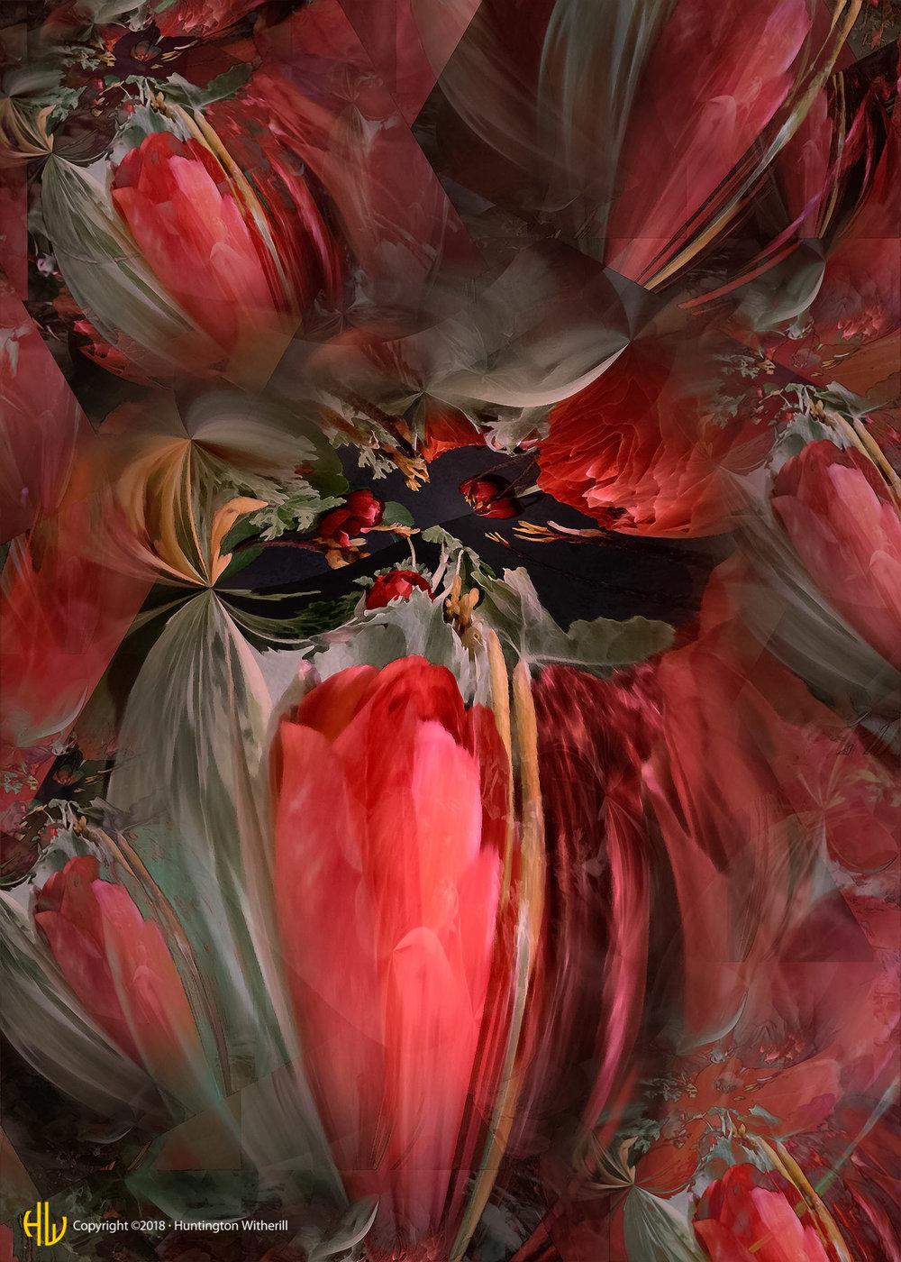 Tulips #34, 2003