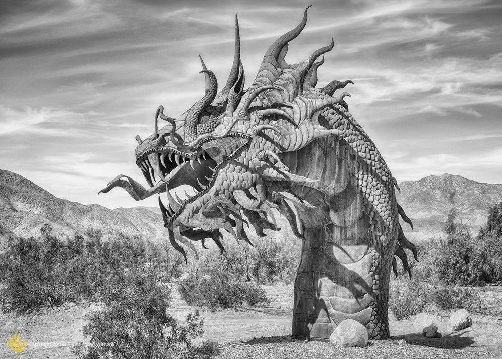 Serpent, Borrego Springs, CA, 2016