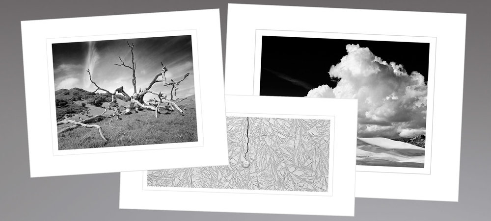 Silver Gelatin Prints -