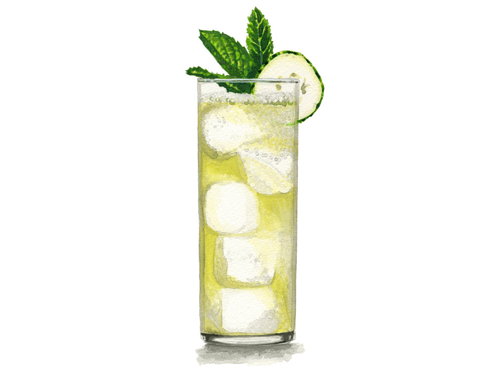 Cucumber Melon | Bibo Barmaid, LLC