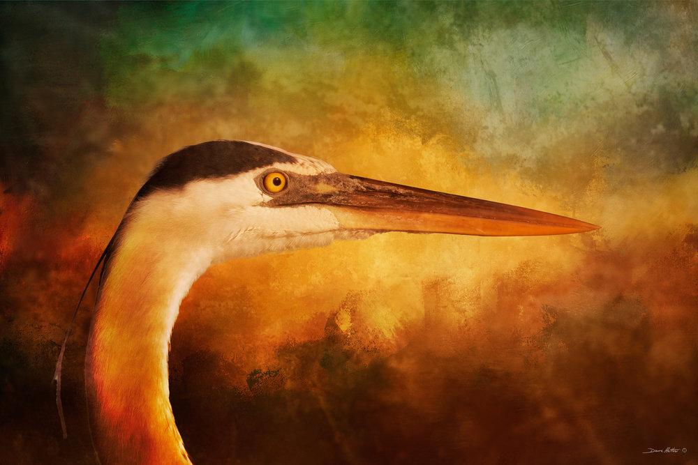 """""""Great Blue Heron"""""""