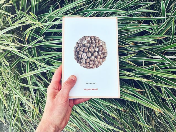 Orlando Virginia Woolf grasses.png