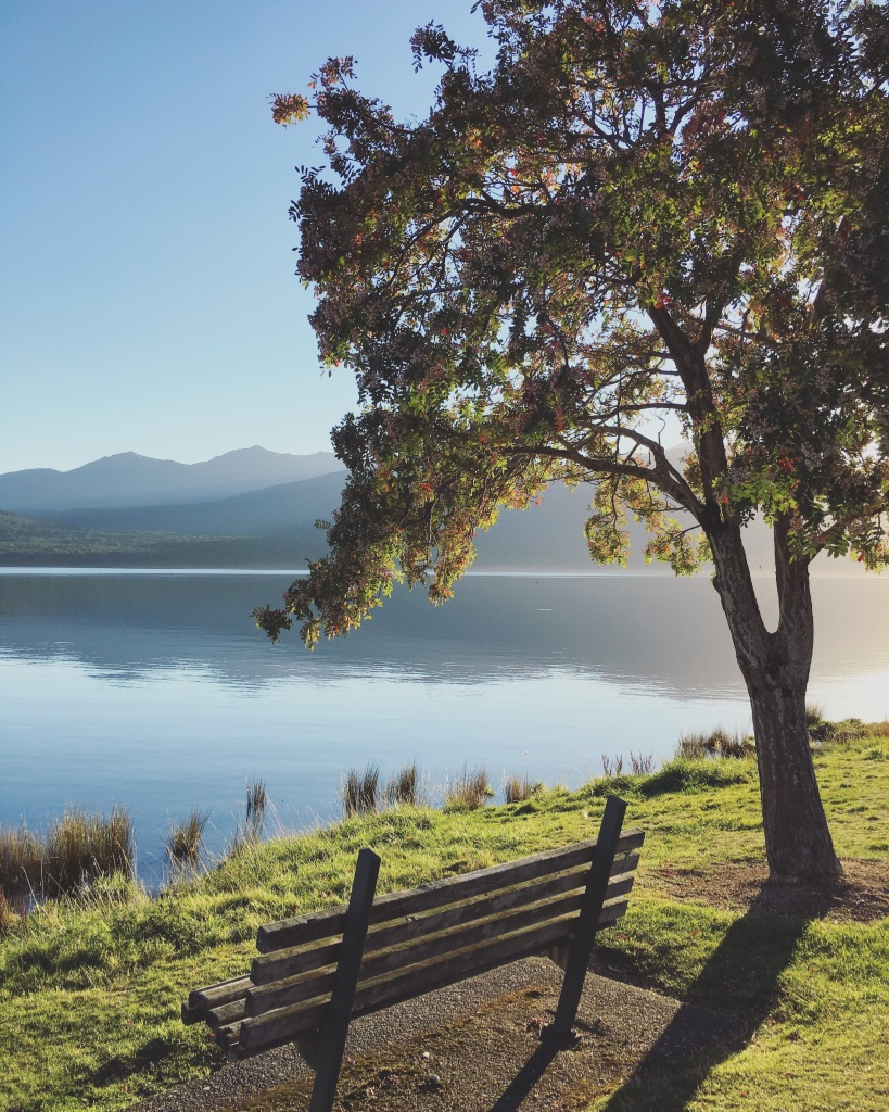 Just a sweet sunny spot in Te Anau overlooking the glassy lake. Love some simple peace ☀️🌿 #downtime   #relaxingdays   #peaceonthewater   #feelslikehome   #newzealand   #teanau   #fiordland   #glasslake   #yearoftravel   #solofemaletravel   #travelblog   #pathunwritten