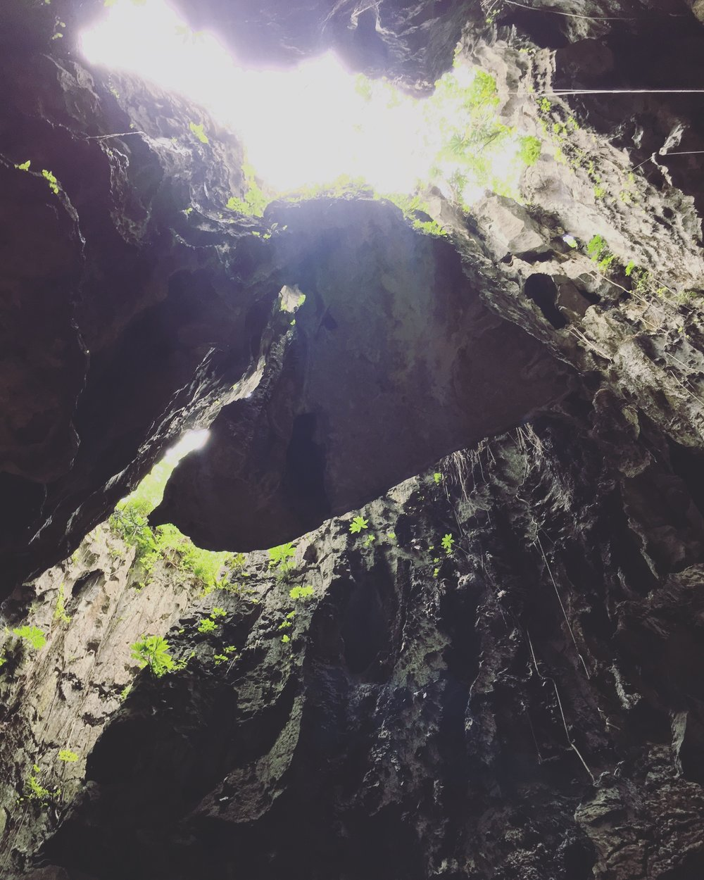 "Climbed through some cool limestone caves in Kampot with Avatar-esque floating rocks. Quote from our awesome guide: ""that'll fall one day."" Cool. Didn't realize how much I missed this! 🧗🏼‍♀️ #armspumped   #caveclimbing   #rockclimbing   #kampot   #cambodia   #seasiatravel   #solofemaletravel   #yearoftravel   #travelblog   #pathunwritten"
