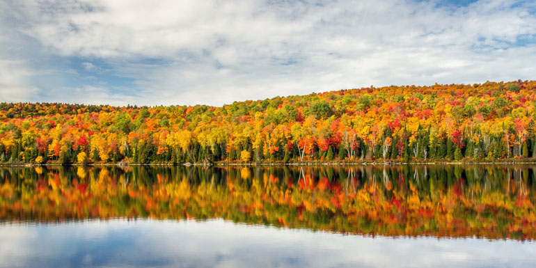 fall-foliage-lake-770.jpg