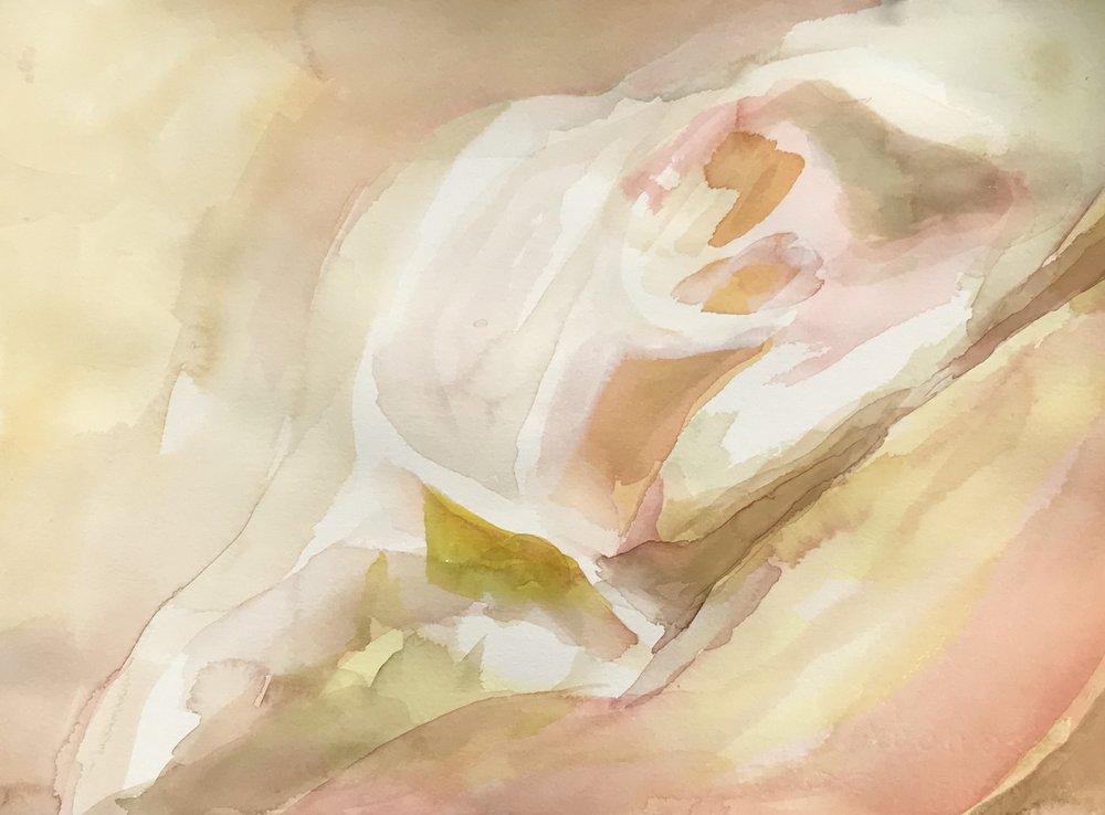 """Shell"" Original Watercolor Painting"