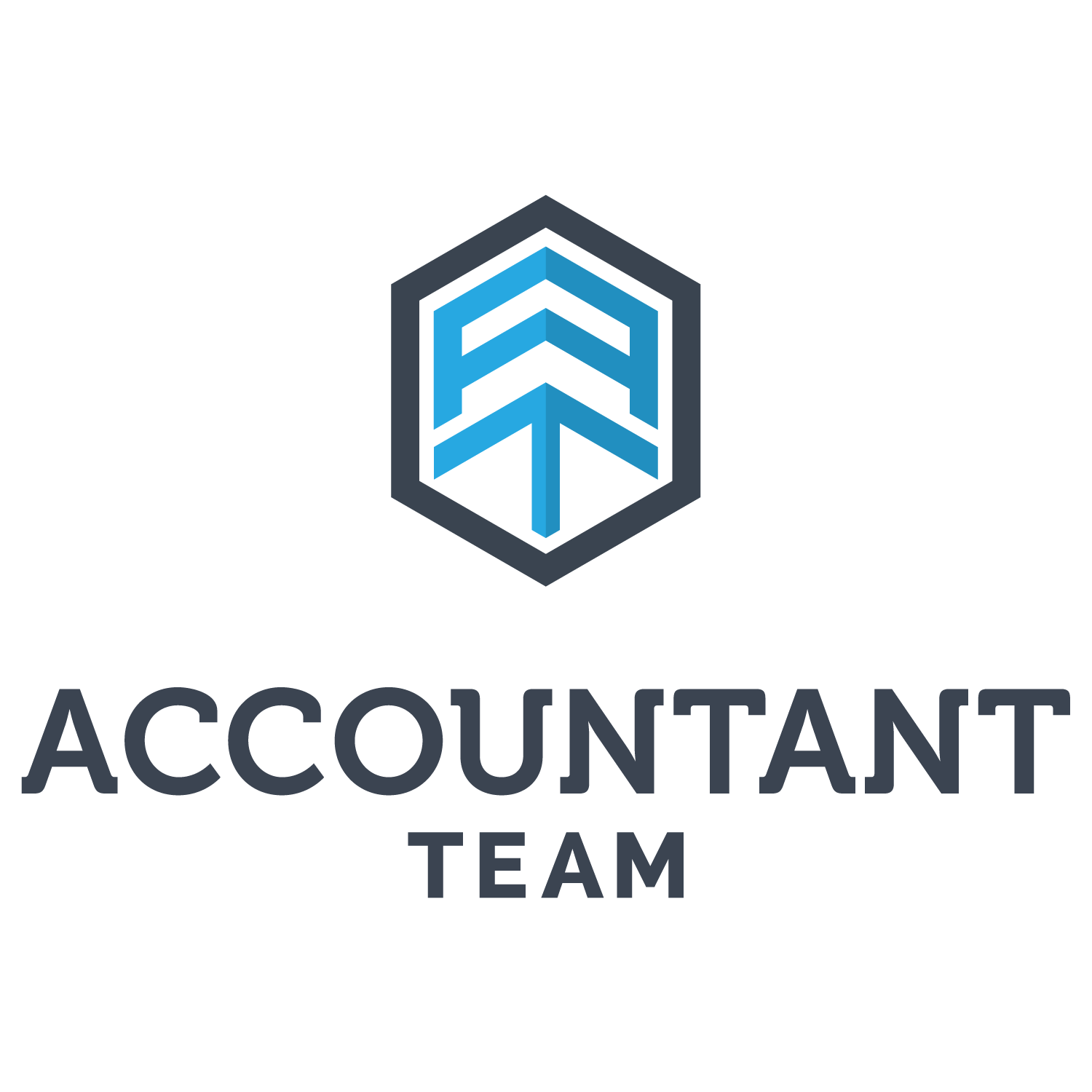 Accountant Team
