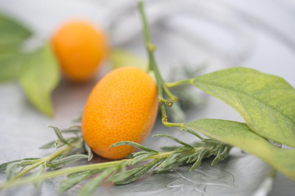 Mixed And Measured | Vegetarian Food Blog by Riley Yahr | Kumquat Lavender Margarita