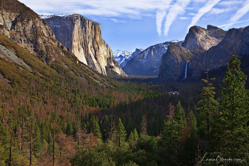 The Tunnel View
