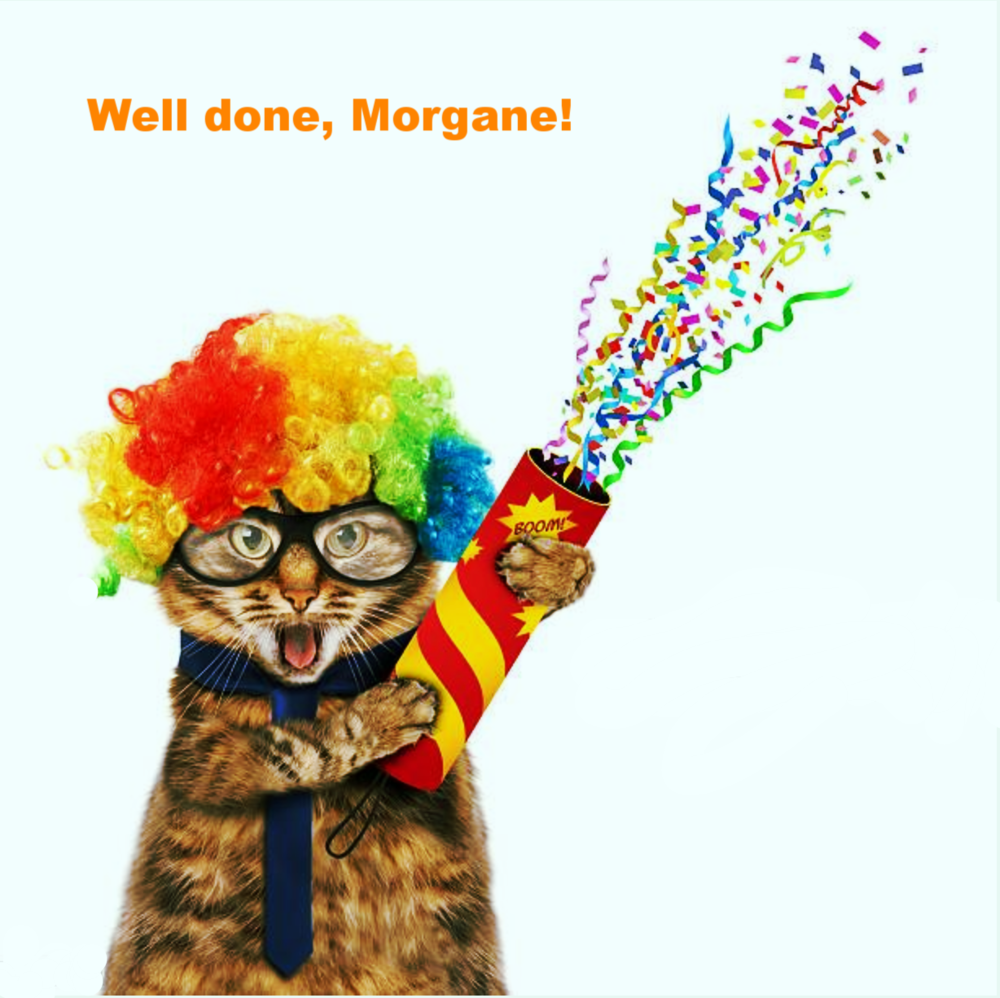 Party cat says well done… now get back to work.