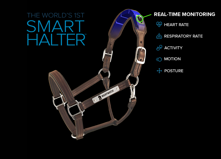NIGHTWATCH® Halter Diagram
