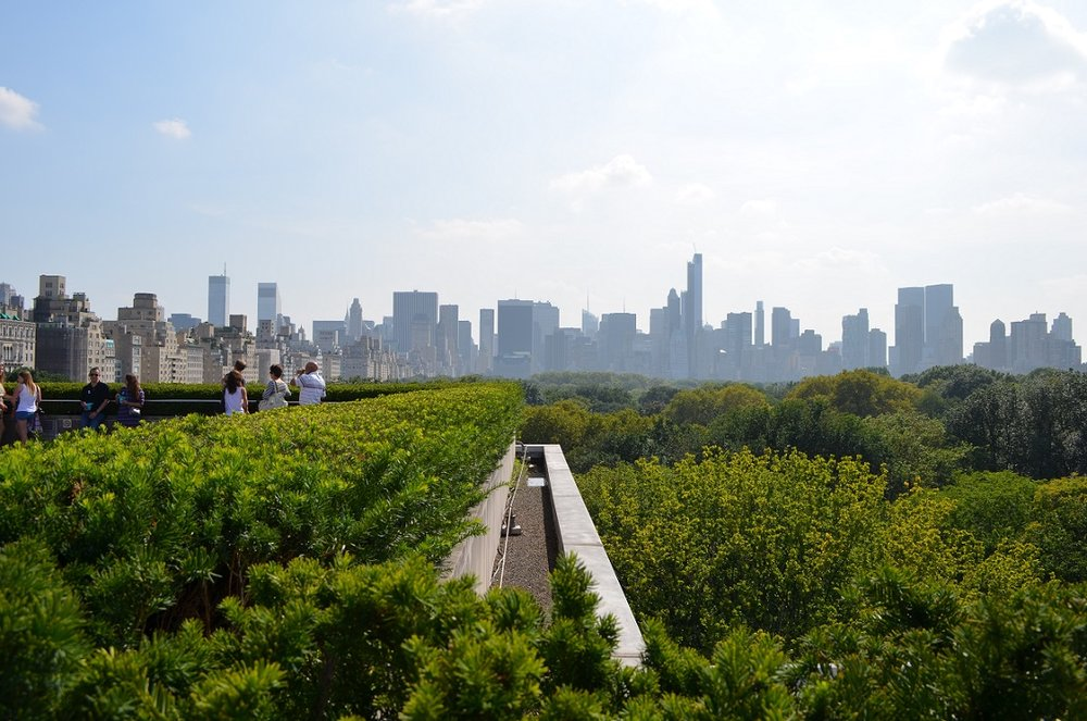 Beautiful skyline from the rooftop of the MET