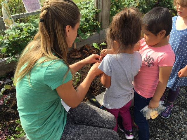 Tofino Community Food Initiative
