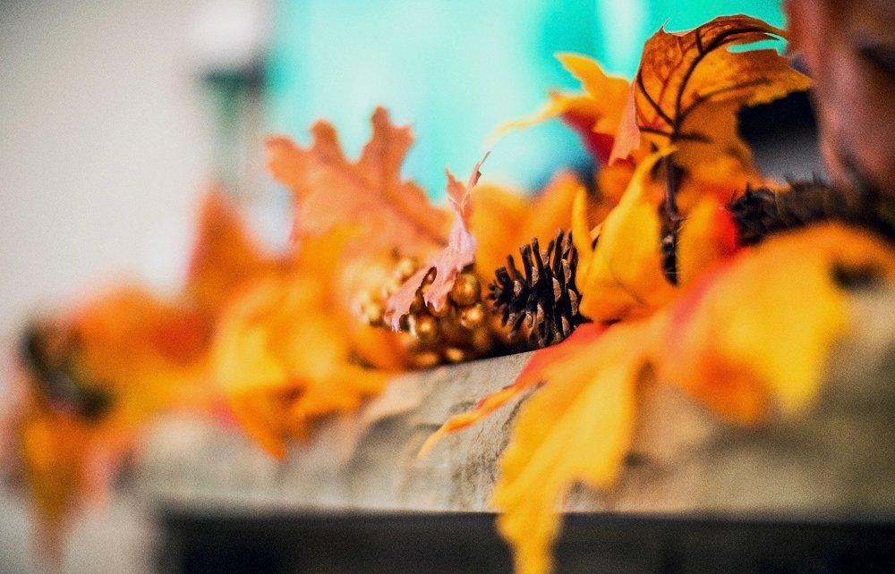 GoingGosnell.Fall.JPG