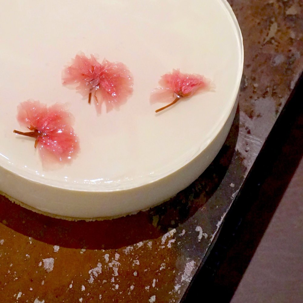Chilled Sakura Cheesecake.JPG